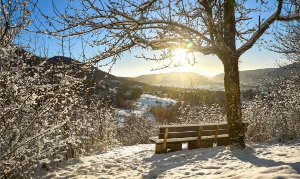 Winterbild: Schnee und Sonne