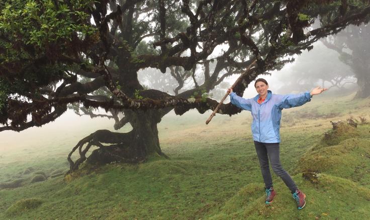 Kraftquelle Wald: Spaziergang mit Wanderstock